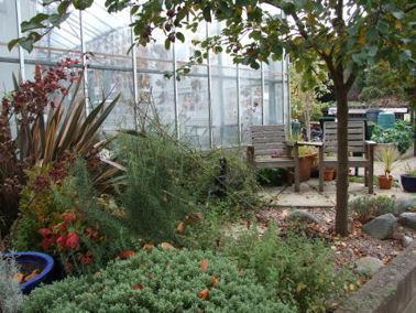 Greenhouse centre